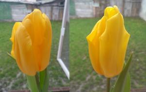 2013-03-21-15.07.jpg
