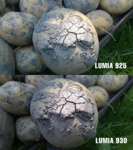 Nokia-Lumia-925-versus-Nokia-Lumia-930_14.jpg
